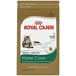 Royal Canin Ragdoll Food Review