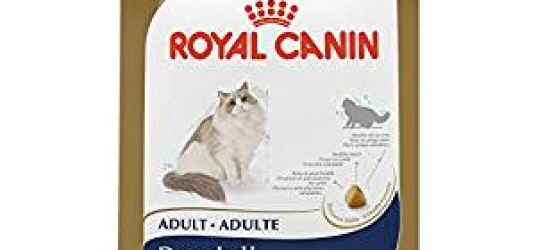 ROYAL CANIN Breed Health Nutrition Ragdoll Cat Food