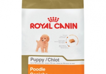 Poodle Puppy Dog Food