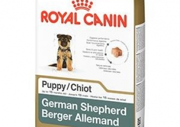 German Shepherd Puppy Dog Food
