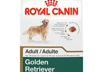 Golden Retriever Adult Dog Food