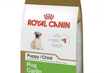 Pug Puppy Dry Dog Food
