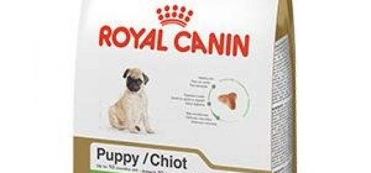 Pug Puppy Dry Dog Food