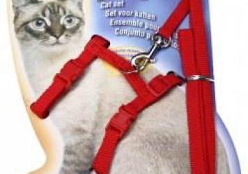 Full Body Harness Cat