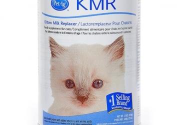 KRM Milk Cats