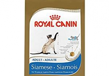 ROYAL CANIN Siamese Cat Food
