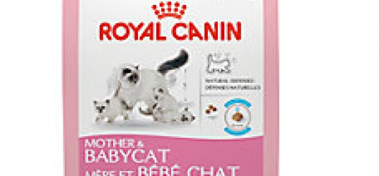 Royal Canin Mother & Baby Cat Food