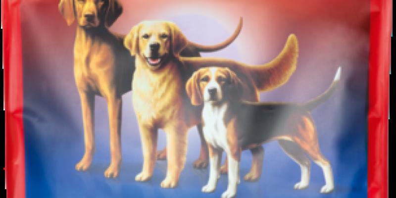 meradog-AGILITY.png