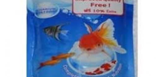 Nova Fish Food