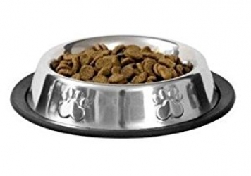 Stainless Steel   Colour Food Bowls for Pets